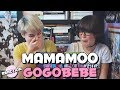MAMAMOO (마마무) - GOGOBEBE (고고베베) ★ MV REACTION
