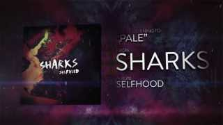Watch Sharks Pale video