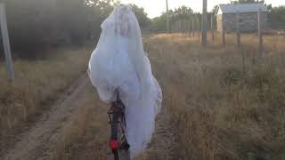Невеста на велосипеде в поле?)Мелитополь