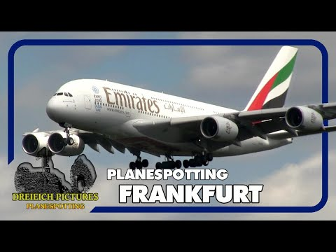Planespotting Frankfurt Airport | Juni 2017 | Teil 2