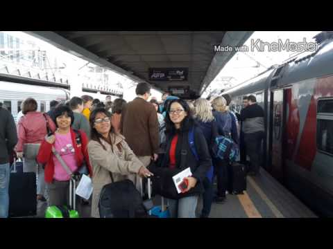 Trip Russia Journey in June 2015