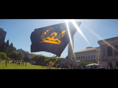 UC Berkeley Alpha Phi - Recruitment 2016