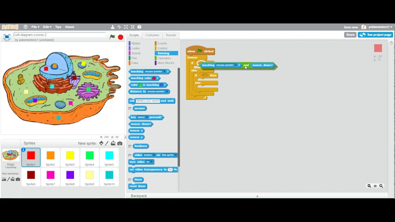Scratch  Interactive Labeled Diagram  Cells