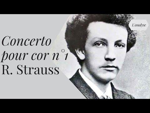 Richard Strauss : le Waldhornkonzert