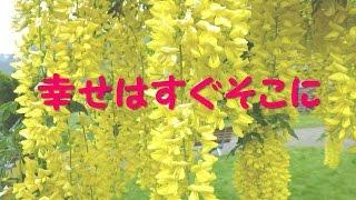 幸せはすぐそこに(天童よしみ)(Tendo Yoshimi, Japanese Enka song)/渡 健