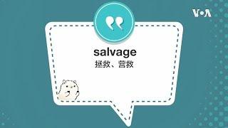 学个词 -salvage