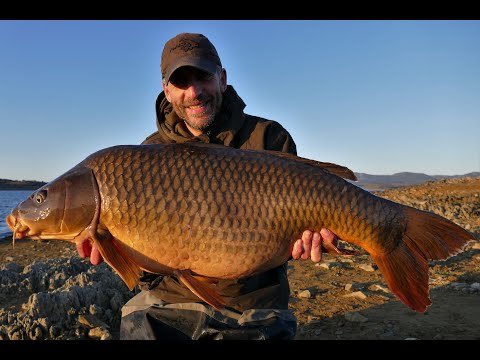 Orellana Adventure - Carp Fishing Vlog December 2019