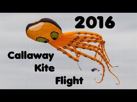 Callaway Kite Flight 2016