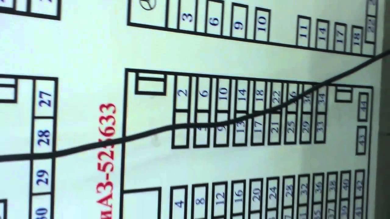 Схема рассадки мест в автобусе фото 727