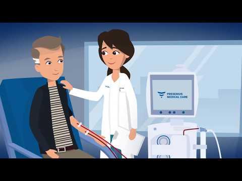 Wie Funktioniert Die Dialyse?