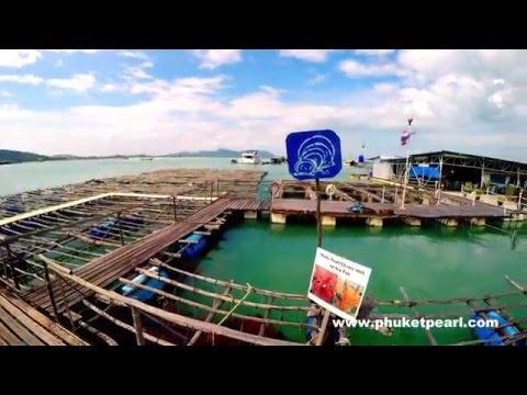 Phuket Pearl Group
