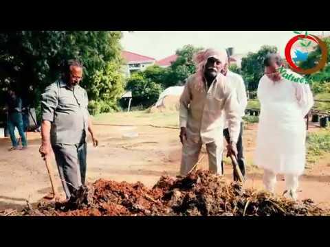 Natural Farming   How to make organic fertilizer-DAP