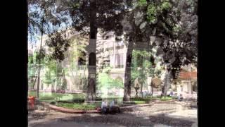 Sân trường năm xưa
