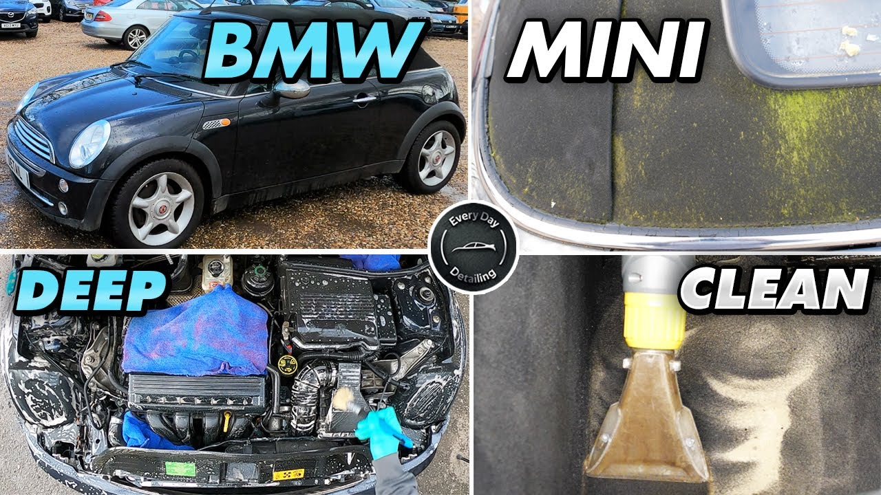 Deep Cleaning a BMW Mini Disaster detail Dirty Filthy Moldy Car challenge