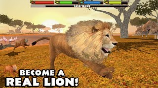 👍🦁Ultimate Lion Simulator-Симулятор льва-By Gluten Free Games-Classic-IOS/Android