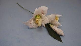 Лилии из конфет. DIY lilium of sweets(Подробный мастер-класс как сделать цветы лилии из конфет. Для этого нам нужно подготовить примерно 3 цветка..., 2014-04-19T22:02:11.000Z)