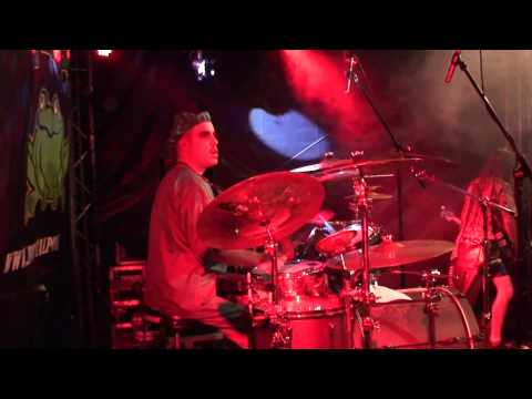 Brutal Polka - Walk like an Egyptian (BEST COVER EVER - live @ Langeln Open Air 2012)