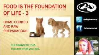 Making home cooked or raw pet food with Dr. MorganWebinar 3