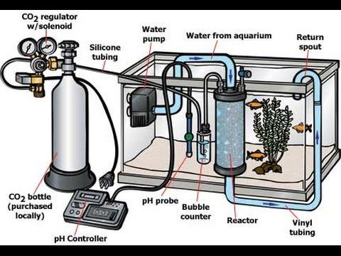 Pressurized Co2 Setup for Planted Aquarium