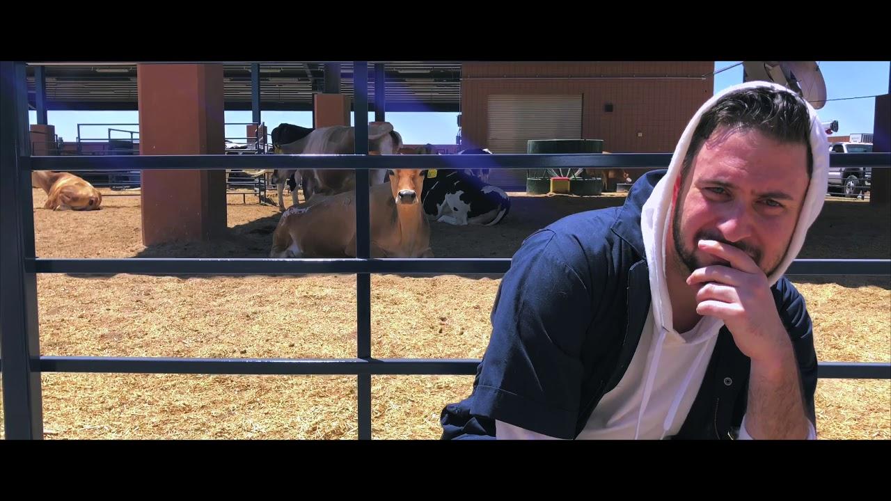 VET SCHOOL - Midwestern University Veterinary Parody