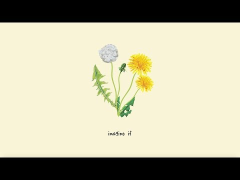 gnash - imagine if (lyric video)