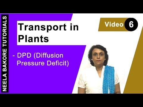 Transport in Plants - DPD (Diffusion Pressure Deficit)