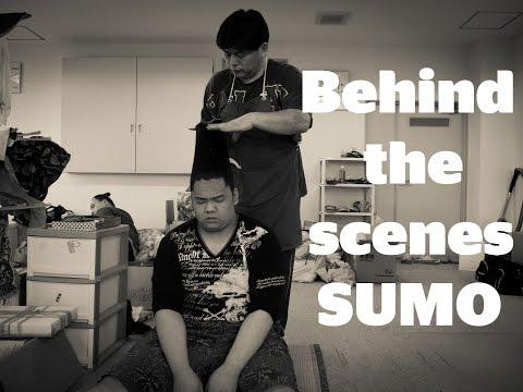 Behind the scenes: SUMO