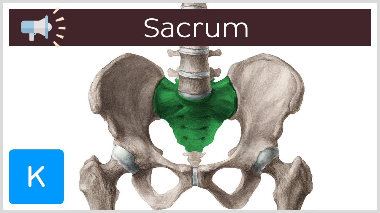 inflamație articulară sacroileită