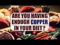 Copper Rich Foods   BoldSky