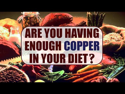 Copper Rich Foods | BoldSky
