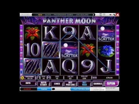 Как играть в игровой автомат Panther Moon. Обучающее видео.