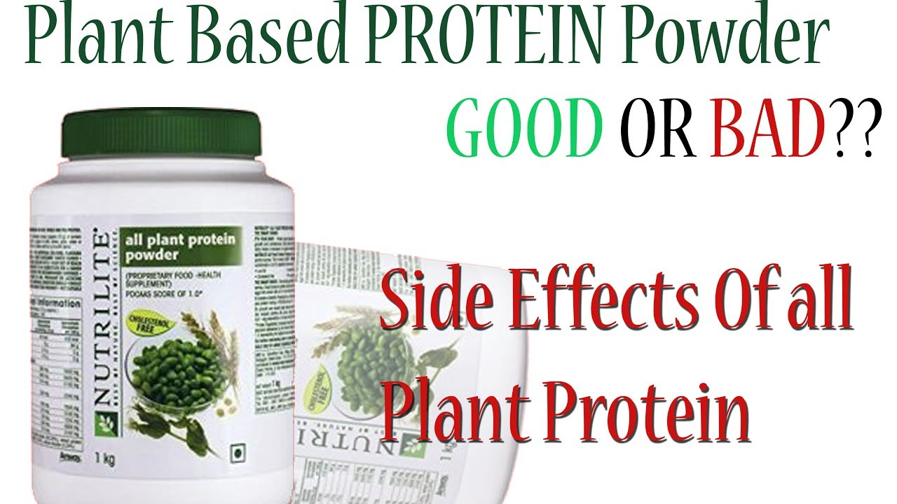 Nutrilite All Plant Protein Use Benefits Side Effect Amway Powder Amway All Products