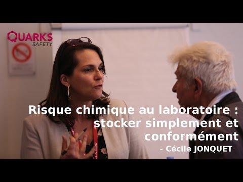 Risque chimique au laboratoire : stocker simplement et conformément - Cécile JONQUET