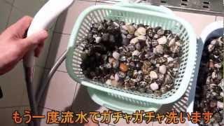 潮干狩りで獲ったアサリの砂抜きと塩抜きの解説ビデオです。 このビデオ...