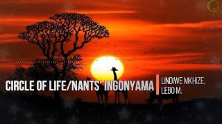 Gambar cover Circle of Life/Nants' Ingonyama - Lindiwe Mkhize, Lebo M. | Lyrics (Terjemahan Indonesia)