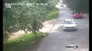 نمر ينهي حياة سائحة في حديقة الحيوانات في بكين بطريقة وحشية