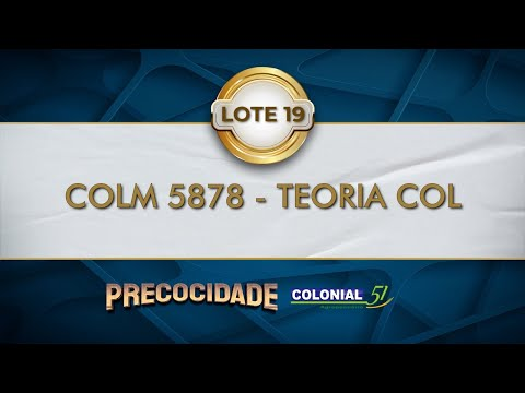 LOTE 19   COLM 5878