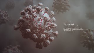The Coronavirus Outbreak | Random42 Scientific Communication