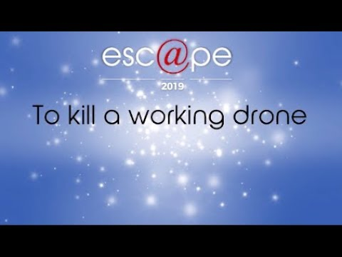 Lucky Nkosi  - To Kill A Working Drone
