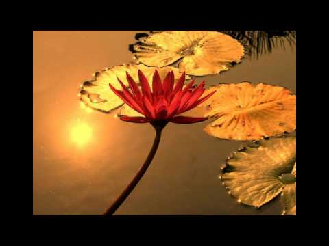 Ananda Giri - The Oneness Presence