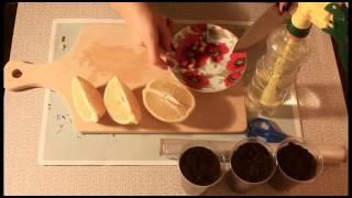 Как посадить лимон из косточки в домашних условиях(Всем привет! В этом видео я расскажу как правильно посадить лимон в домашних условиях. На самом деле больших..., 2016-10-31T21:16:03.000Z)