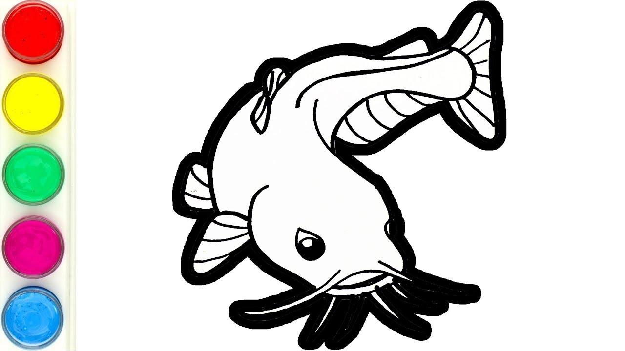 Menggambar Dan Mewarnai Ikan Lele Untuk Anak Catfish Coloring For Kids Youtube