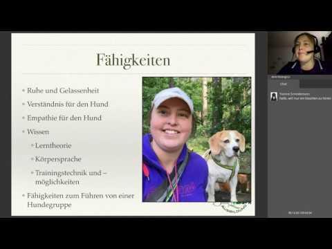 Sanny's Dogwalker Ausbildung 12/2016 Infowebinar