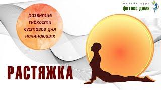 Упражнения для развития гибкости суставов/ растяжка для начинающих/ Фитнес дома