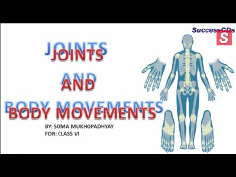 Joints and their types | CBSE Class VI Science Lesson - YouTube