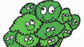 Learn Food Vocabulary - Food Flashcards - Elf Kids Videos - ELF Learning