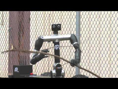 Bimanual Dexterous Robotic Platform (Robo Sally)