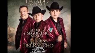 Del Negociante - Los Plebes del Rancho de Ariel Camacho - Karaoke - Pista Original
