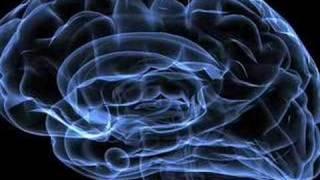 Neurofeedback for Peak Performance - EEG Info Videos