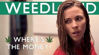 Where's the Money? | Weedland